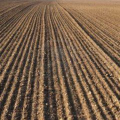 Set prelevare probe netulburate de sol